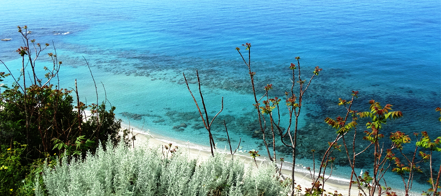 Coast_Click_galleria_chisiamo (3)