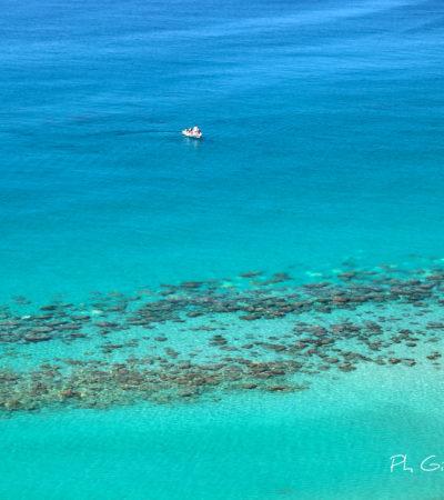 Qualità del mare: per la tua vacanza scegli la Calabria, acque  eccellenti per il 91,5%